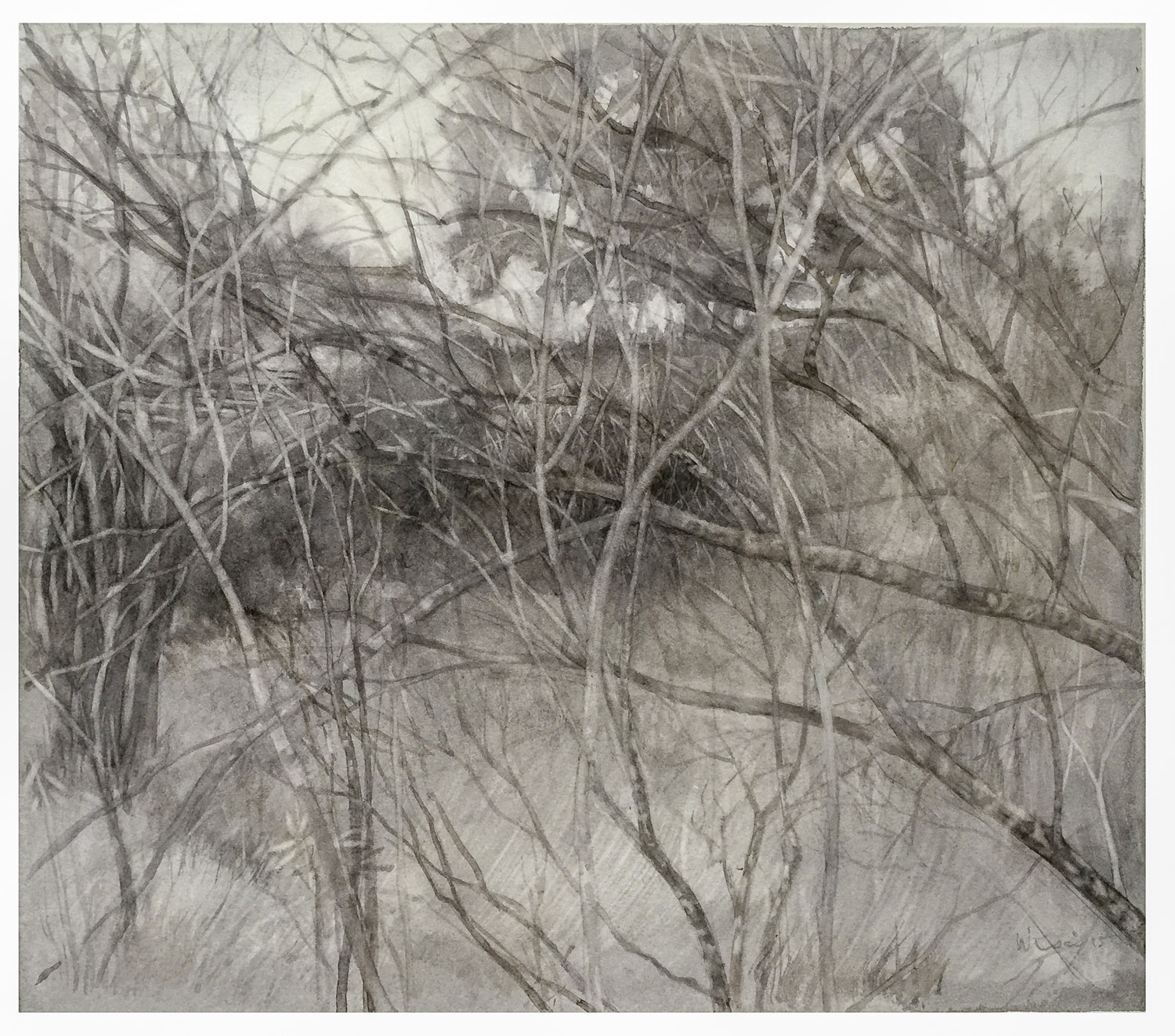 The Gully Winter#2 2015 - Wendy Tsai