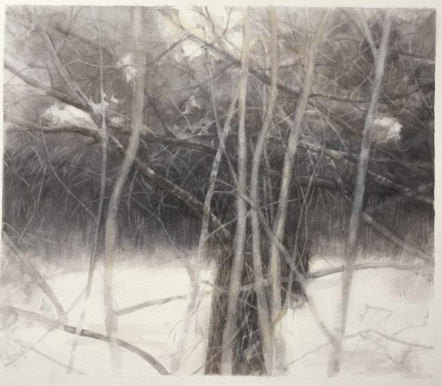 Wendy Tsai The Gully Winter#1