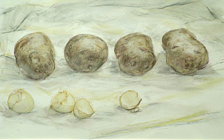 janet_dawson_vegetable_study_I