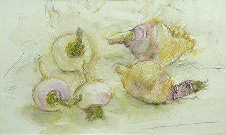 janet_dawson_vegetable_study_II