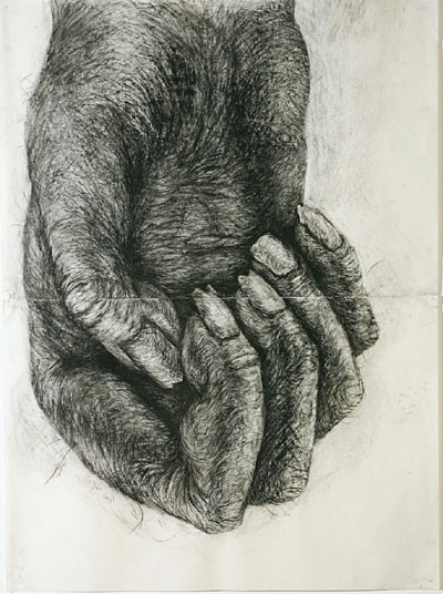 lisa_roet_pri-mate_hand
